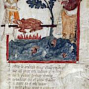 King Arthur And Giant Art Print