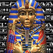 King Of Egypt Art Print
