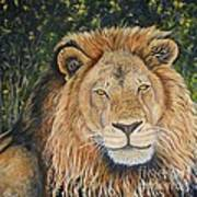King Of The African Savannah Art Print