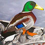 King Of The Pond Art Print