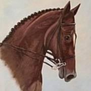 Kingd'azur Art Print