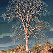 King's Tree Art Print