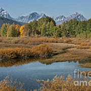 Kiss Of Fall In The Grand Tetons Art Print