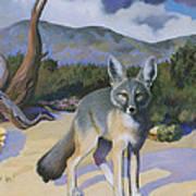 Kit Fox Art Print