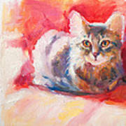 Kitten On Red Chair Art Print