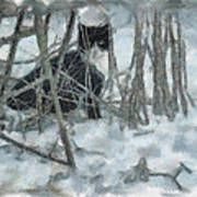 Kitty In The Cold Art Print