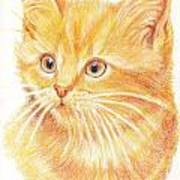 Kitty Kat Iphone Cases Smart Phones Cells And Mobile Cases Carole Spandau Cbs Art 339 Art Print