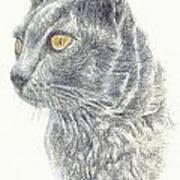 Kitty Kat Iphone Cases Smart Phones Cells And Mobile Cases Carole Spandau Cbs Art 347 Art Print