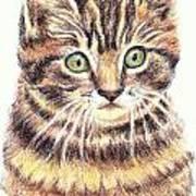 Kitty Kat Iphone Cases Smart Phones Cells And Mobile Cases Carole Spandau Cbs Art 350 Art Print
