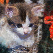 Kitty Photo Art 02 Art Print