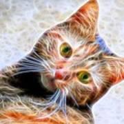 Kitty Strange Art Print