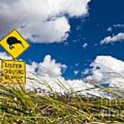 Kiwi Crossing Road Sign In Nz Art Print