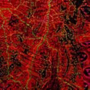 Klimt Surface Art Print
