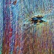 Knotty Plank #1b Art Print