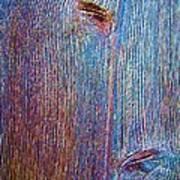 Knotty Plank #2b Art Print