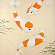 Kohaku Art Print
