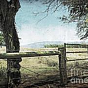 Kohala Ranch Art Print