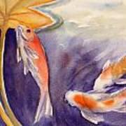 Koi In A Lily Pond 11 Art Print