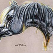 Kordelas Polish Arabian Horse Soft Pastel Art Print