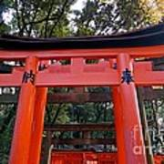 Kyoto Fushimi Shrine-4 Art Print