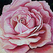 La Bella Rosa Art Print