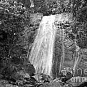 La Coca Falls El Yunque National Rainforest Puerto Rico Print Black And White Art Print
