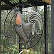 La Decoration Sur La Cage De Poulet Art Print