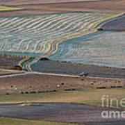La Mancha Landscape - Spain Series-ocho Art Print