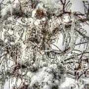 Labyrinth Of Ice Art Print