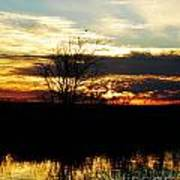 Lacassine Painted Sunset Art Print
