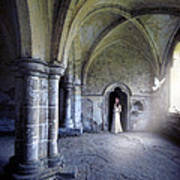 Lady In Abbey Room With Doves Art Print
