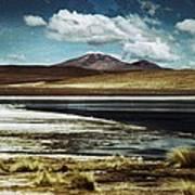 Lagoon Grass Bolivia Vintage Art Print