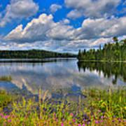 Lake Abanakee In Indian Lake New York Art Print by David Patterson