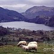 Lake Gwynant Snowdonia Wales Art Print