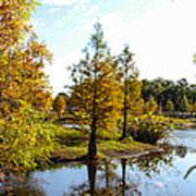 Lake Howard - Fall Color In The Park Art Print