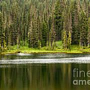 Lake In Mt Rainer National Park Art Print