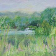 Lake Isaac Impressions Art Print