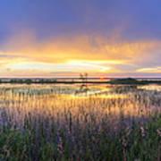 Lake Jackson Sebring Florida Panorama Art Print