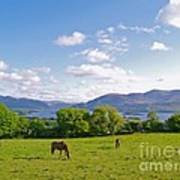 Lake Killarney From Aghadoe Hill County Kerry Art Print