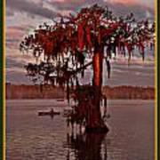 Lake Martin Louisiana Art Print