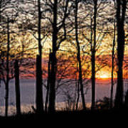 Lake Michigan Sunset With Silhouetted Trees Art Print