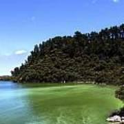 Lake Ngakoro Rotorua New Zealand Art Print