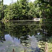 Lake On The Magnolia Plantation With White Bridge Art Print