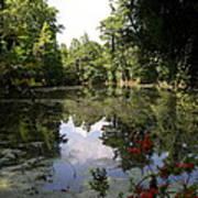 Lake On The Plantation Art Print