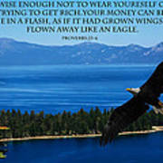 Lake Tahoe Eagle Proverbs Art Print