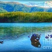 Lake View Of Mount Saint Helens  Art Print