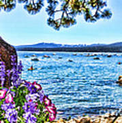Lake View On Lake Tahoe By Diana Sainz Art Print