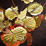 Lake Washington Lily Pad 11 Art Print