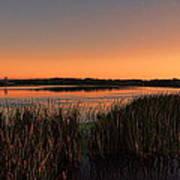 Lake Wausau Marshgrass Art Print