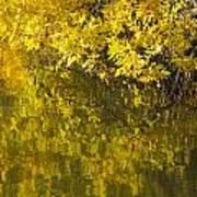 Lake Winona Autumn 12 Art Print